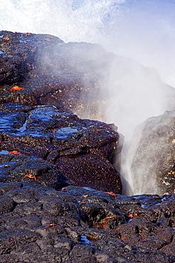Blow hole spouting on Espanola Island Archipeligo, Ecuador. Pacific Ocean.