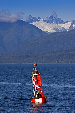 Northern (Steller) sea lion (Eumetopias jubatus) on navigational buoy just outside Petersburg in Southeastern Alaska, USA